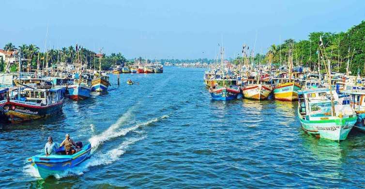 Negombo: Dutch Canal, Negombo Lagoon, Muthrajawela Boat Tour