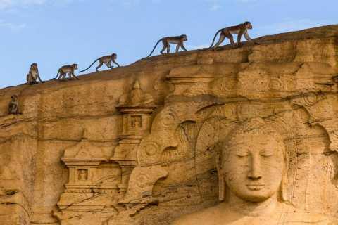 Dambulla: Polonnaruwa & Sigiriya All-Inclusive Tour