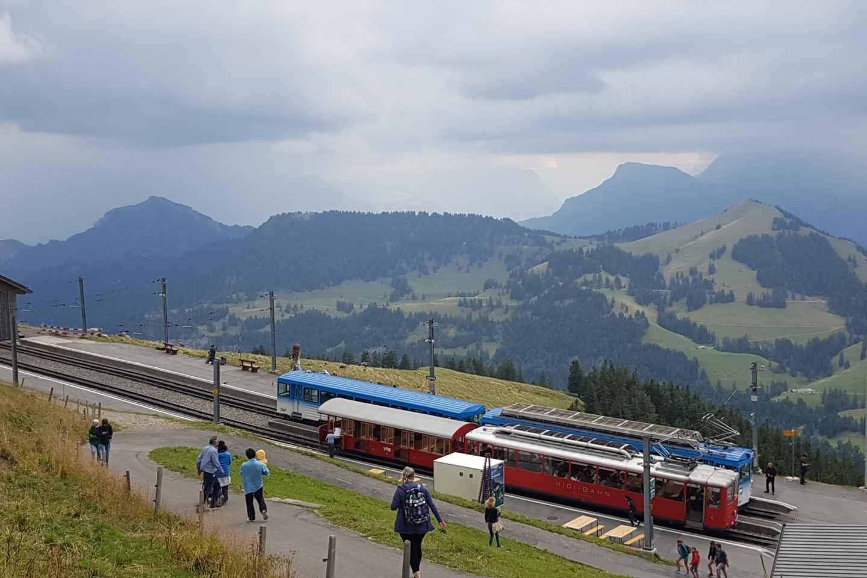 Ab Basel: Private Rigi-Tour mit Vierwaldstättersee-Kreuzfahrt