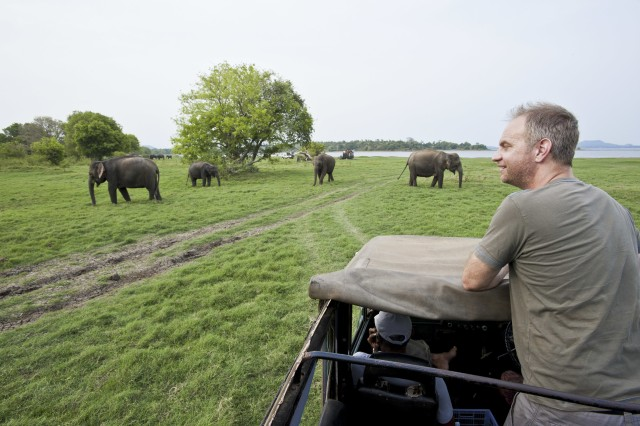 All-inclusive Minneriya National Park Middagsafari