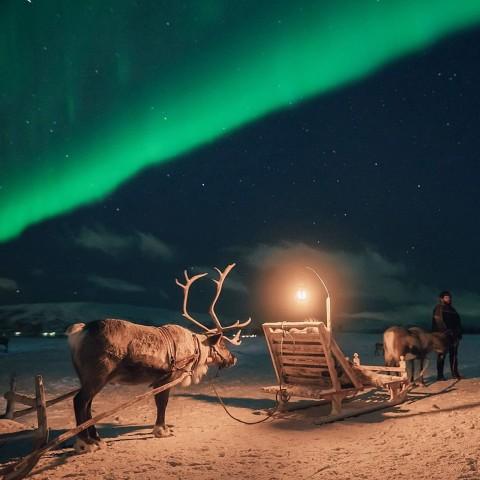 Vanuit Tromsø: rendiersleeën, diner en kans op Noorderlicht