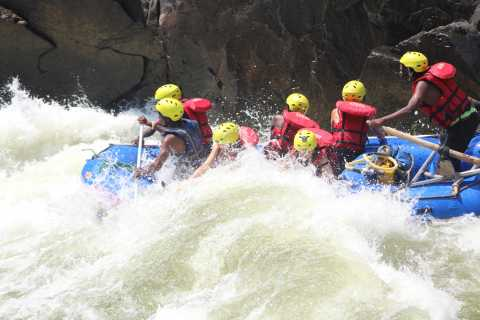 From Livingstone & Victoria Falls: Zambezi Half-Day Rafting