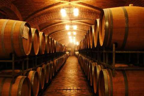 Portimão: Tour en barco y jeep por la costa con degustación de vinos
