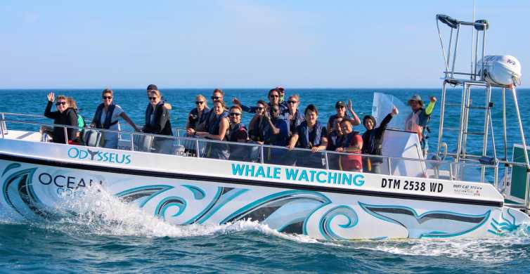 Knysna: Eco-Marine Boat Tour