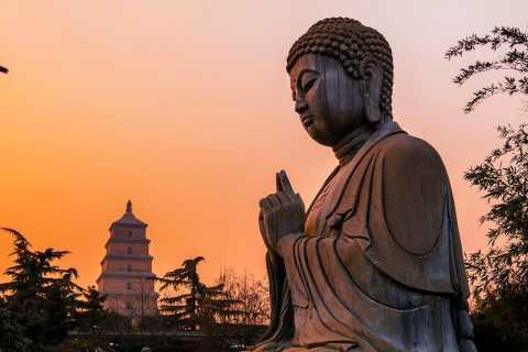 Big Wild Goose Pagoda: Small Group Buddhism Walking Tour