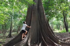 Floresta Amazônica: Excursão de 3 ou 4 Dias no Rio Juma