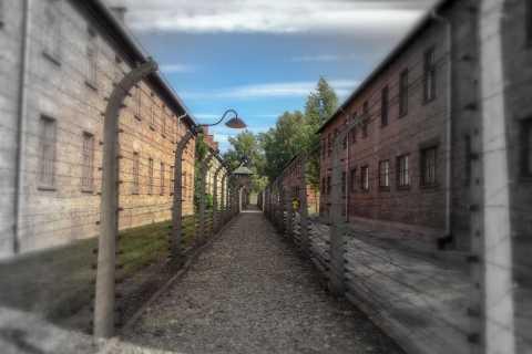 From Kraków: Auschwitz and Birkenau Private Tour