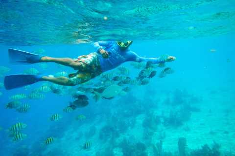 Cozumel: 1-day Snorkel Tour from Cancun