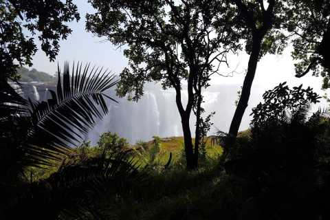 Victoria Falls: Guided Walking Tour
