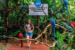 Ingresso Oficial Parque das Aves