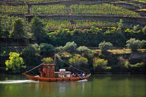 Desde Peso da Régua: Tour de degustación de vinos en el valle del Duero y crucero