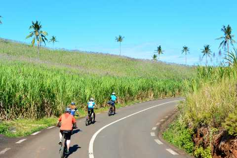 Chamarel Village: Full-Day Electro-Bike Tour with Lunch
