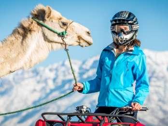 Abenteuer Marrakesch: Quadfahren und Kamelreiten