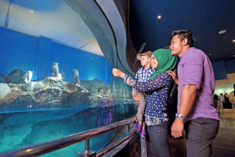 Underwater World Langkawi Admission Ticket
