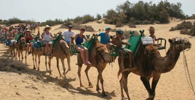 Gran Canaria: Ri på en kamel gjennom sanddynene i Maspalomas