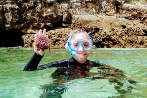 Lisbon: Arrábida Snorkeling Adventure