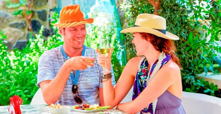 Santorini Half-Day Wine Adventure Tour