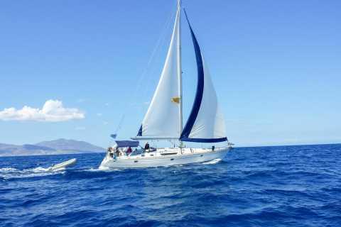 Rhenia e Delo: crociera in yacht e tour guidato