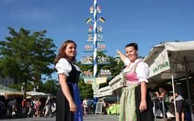 Munich: Viktualienmarkt 1.5-Hour Culinary Tour