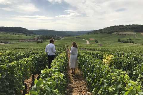 Small Group Winery Tour from Dijon to Beaune with Lunch