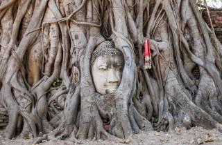 Ab Bangkok: 5 UNESCO-Tempel in Ayutthaya - Kleingruppentour