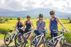 Passeio de Bicicleta Elétrica Terraços de Arroz de Jatiluwih
