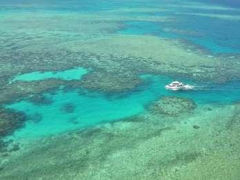 Mission Beach: Schnorchel- / Tauchtour am Great Barrier Reef