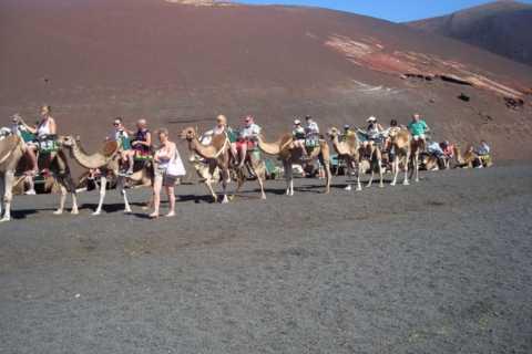 Lanzarote: Timanfaya National Park och La Geria Day Tour