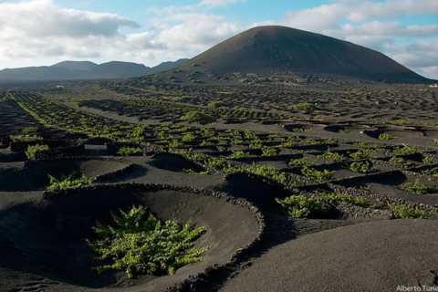 Lanzarote: Full dag bussresa med natursköna vyer
