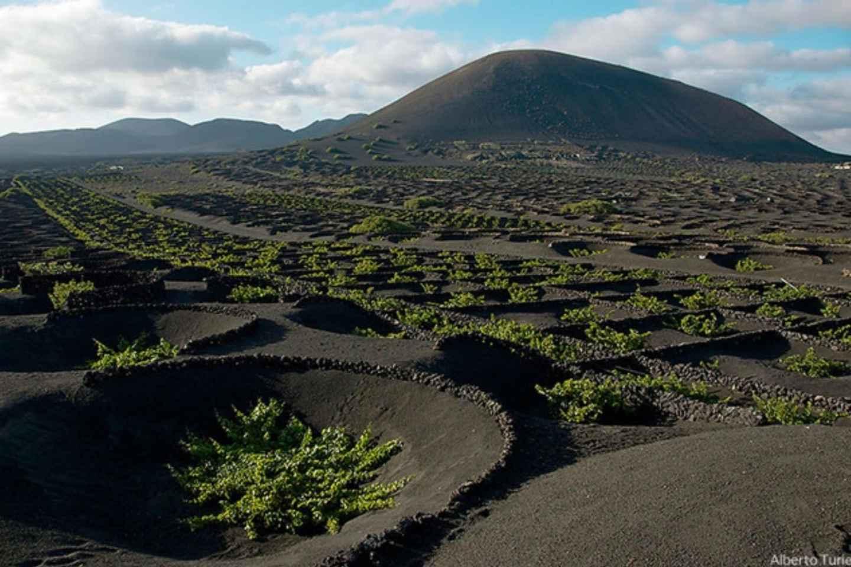 Lanzarote: Ganztägige Bustour mit Panoramablick