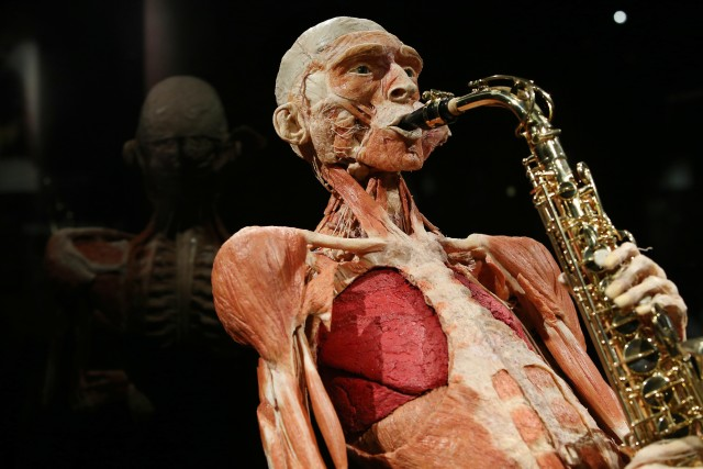 Body Worlds Amsterdam: ticket voor The Happiness Project