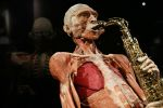Body Worlds Amsterdam: The Happiness Project Ticket