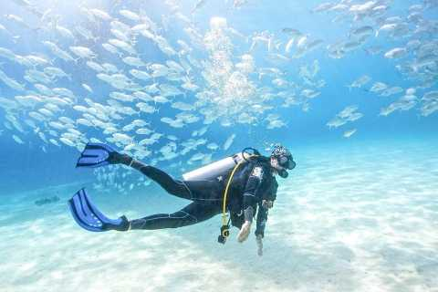 Dubai: PADI Basic Scuba Diving Course