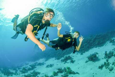 From Dubai: Fujairah Half-Day Scuba Dive and Snorkeling