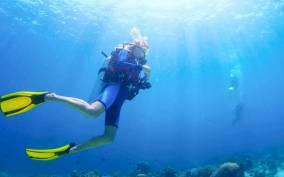 From Dubai: Fujairah Scuba Dive & Snorkeling with live BBQ