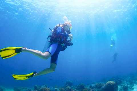 From Dubai: Fujairah Scuba Dive & Snorkeling with live BBQ