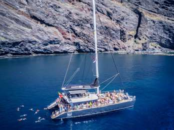 Costa Adeje: Masca & Los Gigantes Walbeobachtungs-Tour