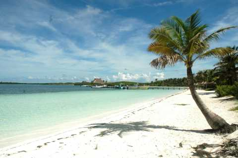 Riviera Maya: Contoy & Isla Mujeres dagtour met lunch
