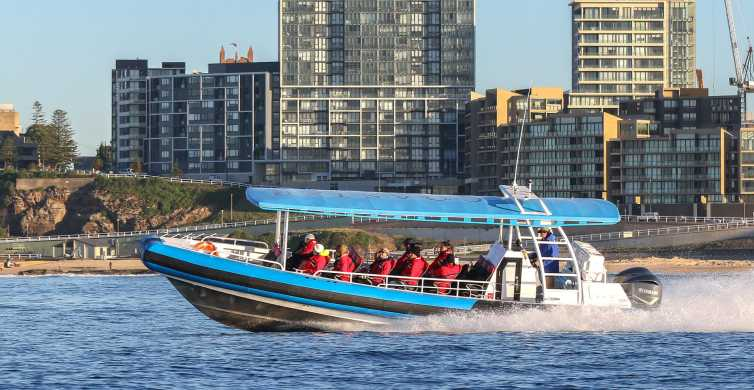 Newcastle: Harbor and Coast 2.5-Hour Sightseeing Cruise