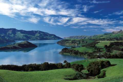 Akaroa Day Tour with Harbour Cruise from Christchurch