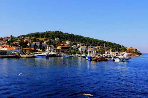 From Istanbul: Full-Day Princes' Island Tour