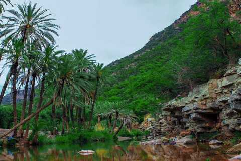 Agadir Paradise Valley Half-Day Guided Trip