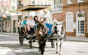 Charleston: 1-Hour Carriage Tour of the Historic District
