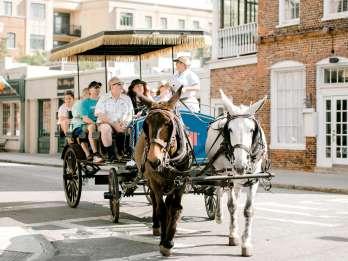 Charleston: 1-stündige Kutschfahrt durch die Altstadt
