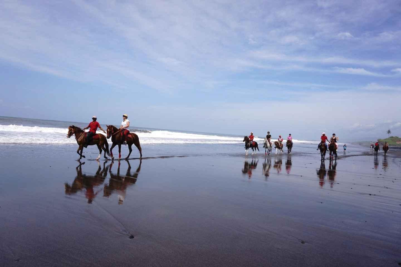 Langudu zu Pferde: Reiten am Strand und in den Reisfeldern