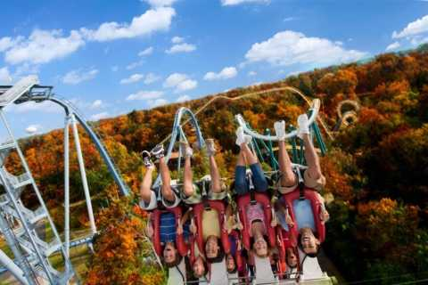 Williamsburg: Busch Gardens Ticket & Water Country Option