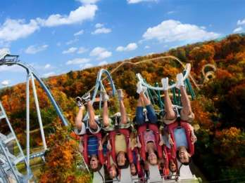 Williamsburg: Busch Gardens Ticket & Wasserland Option