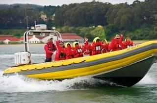 Bucht von San Francisco: Abenteuer Bootstour