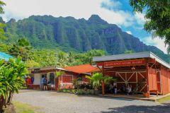 Oahu: North Shore e Dole Plantation Island Tour