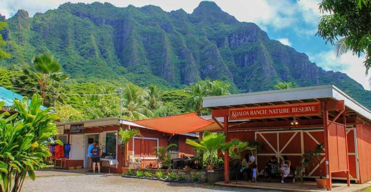 Oahu: North Shore & Dole Plantation Island Tour